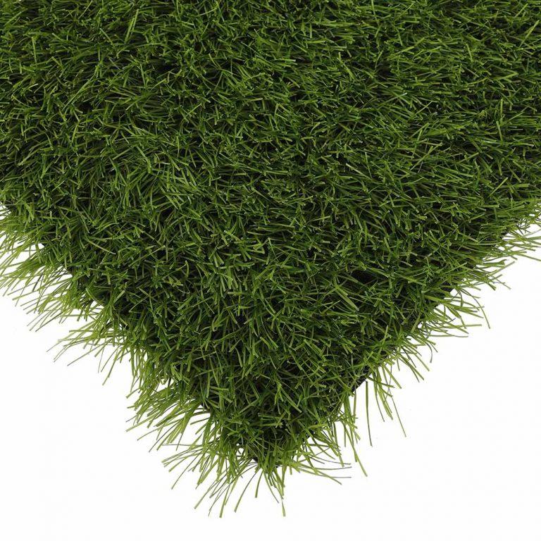 001 power grass suni cim 768x768 1